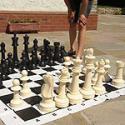 Садовые шахматы Garden Games 011