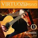 Набор 6 струн для гитары акустик VIRTUOZO 00050.PRO