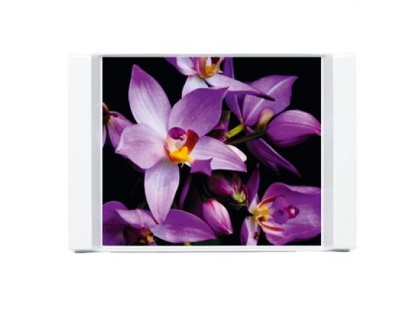 Поднос Emsa 44*32см Орхидеи 509411
