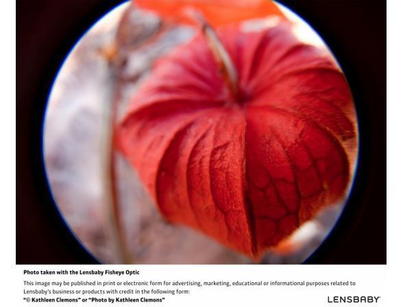Объектив Lensbaby Control Freak Double Glass for Canon