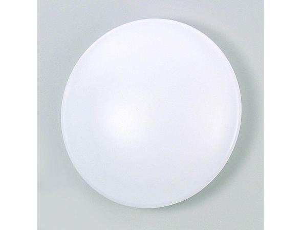 Светильник настенно-потолочный GLOBO 4253