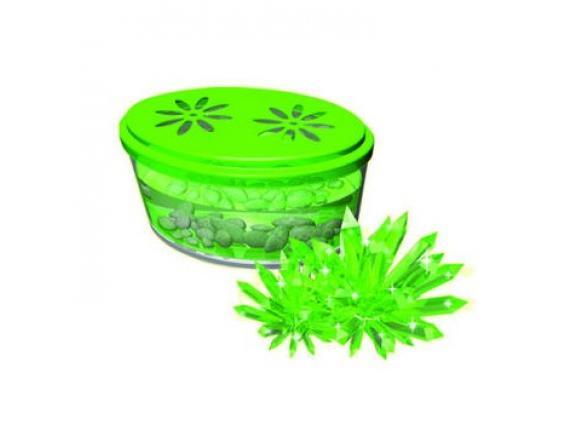 Научный опыт День знаний Кристаллизация. Зеленый кристалл (28903)