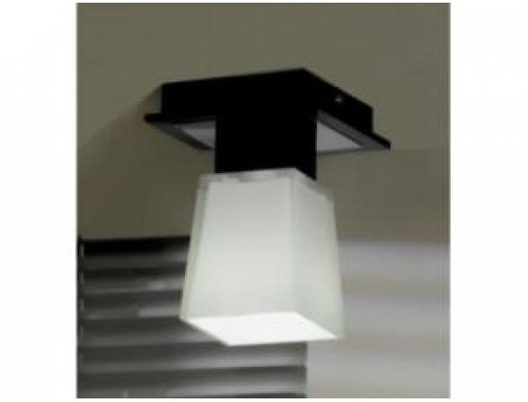 Светильник потолочный Lussole LSC-2507-01