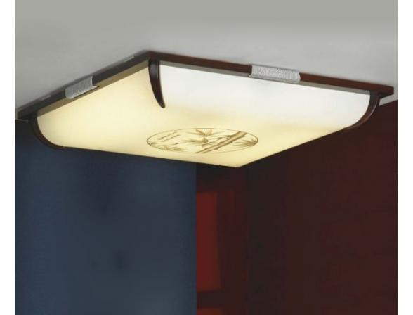 Светильник настенно-потолочный Lussole LSF-8022-03