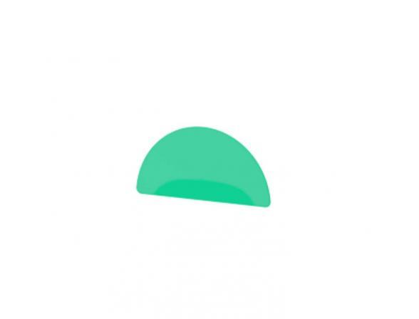 Декоративный элемент (зеленый) FBS LUXIA LUX 087