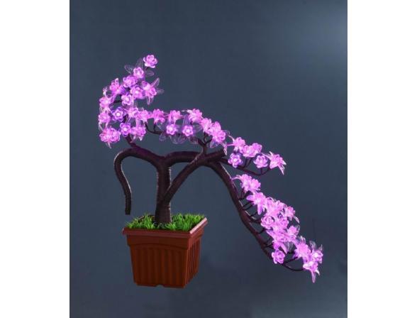 Декоративное дерево сакура