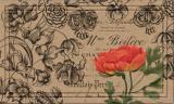 Коврик влаговпитывающий Apache Naturelles Vintage Floral Peony 46х76