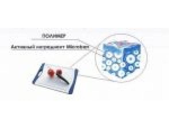 Кухонная доска антибактериальная MICROBAN CAVO BELLO 29x20см B-S-G