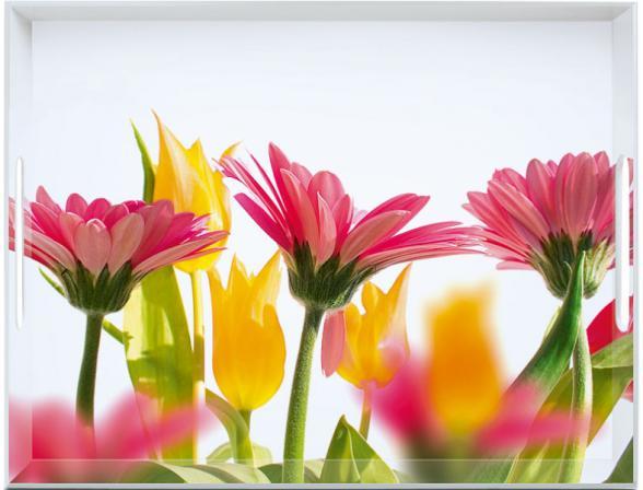 Поднос Emsa 40*31см Летние Цветы 506927