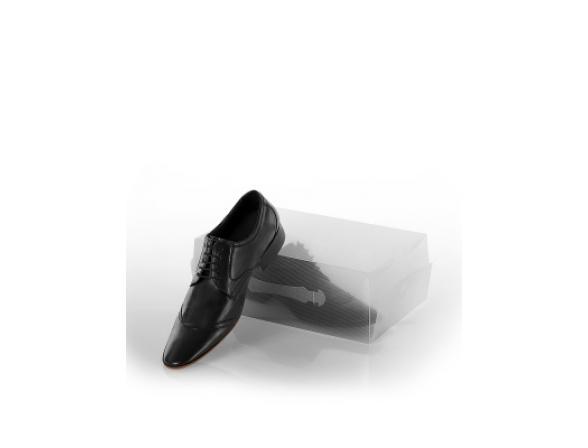 Коробка для хранения мужских туфель LOKS L102-107